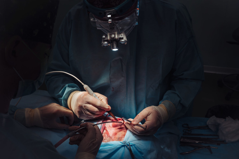 Eco-endoscopia per intervento al pancreas: la degenza diventa di soli due giorni
